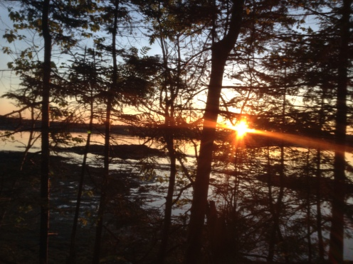 Jen made this iPhone picture of the June 5 sunrise at Cobscook State Park while lying in her sleeping bag. (Photo by Jennifer Moore)
